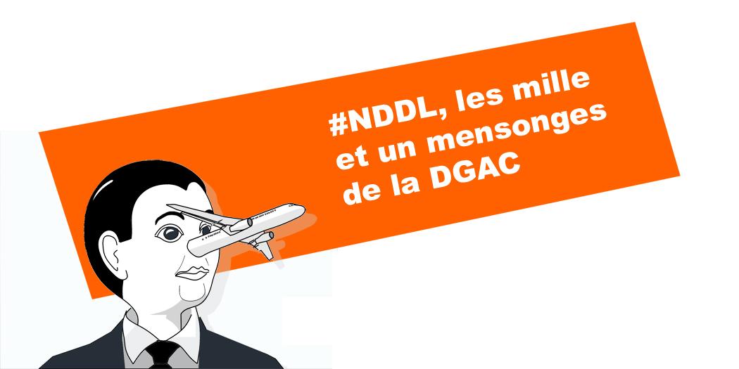 Pino-DGAC